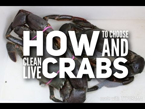 How to Choose & Clean Live Crabs // An easy & simple step-by-step video 如何选杀活螃蟹