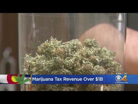 BEARDO - Tax Revenue From Pot Hits The Billion Dollar Mark