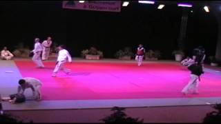 TKD78- Taekwondo Nuit des Arts Martiaux 2013