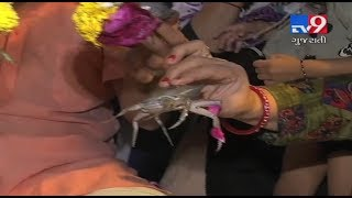 Devotees offer living crabs to Lord Shiva for a better health at a temple in Surat, Gujarat