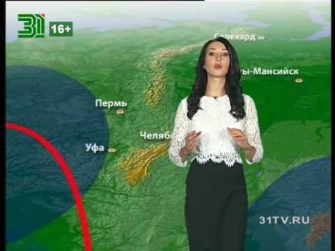 Прогноз погоды на 30 сентября и 1,2 октября