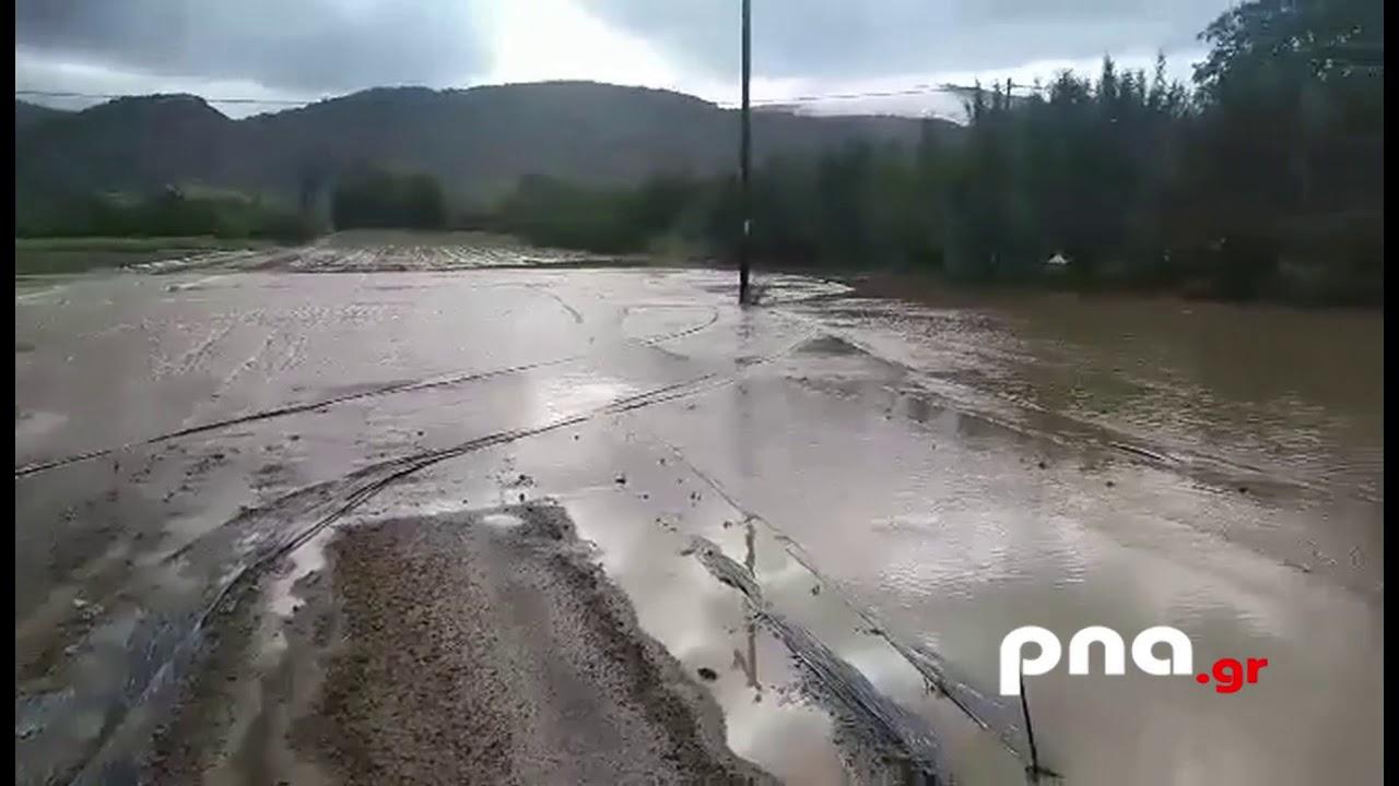 Ολική καταστροφή στις καλλιέργειες στην περιοχή του Βουνού Τεγέας