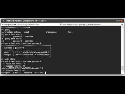 The Mole - Exploiting A SQL Injection