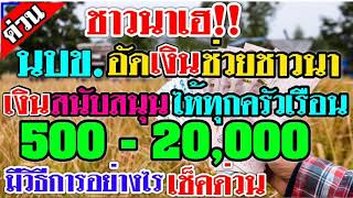ชาวนาเฮ!นบข.อัดเงินช่วยชาวนาพร้อมสนับสนุนเงินช่วยเหลือไห้ทุกครอบครัว20,000บาทมีวิธีดังนี้#07/07/63