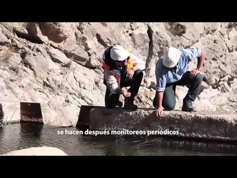 Biodiversidad de fauna en Catamarca