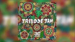 tribo de jah traitors of the nation official audio