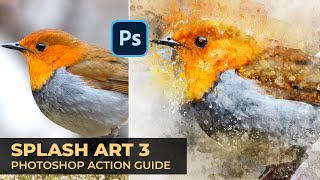 Splash Art 3 Photoshop Action Guide