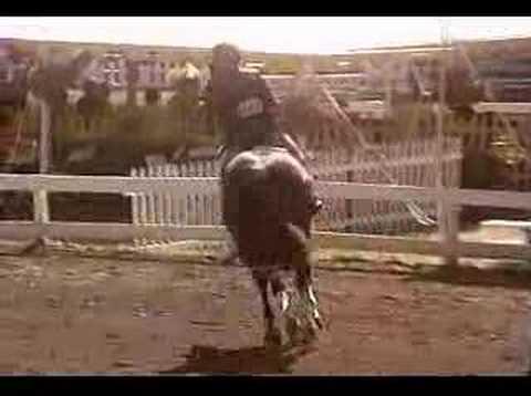 Pathfinder Saratoga Classic
