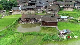 这地方太安静了,与世隔绝的一个小山村,去这里住一辈子真好