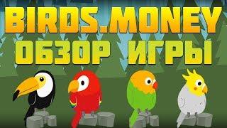 birds.Money игра с выводом денег обзор и отзывы