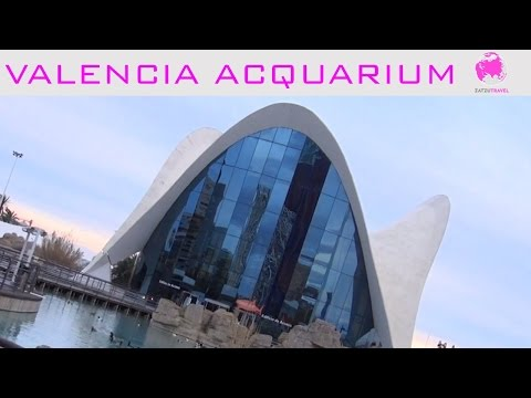 Cities of Europe; Valencia Aquarium