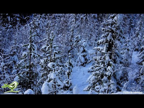 1 Hour of Happy Piano Cello Bells Music   Instrumental Christmas Music