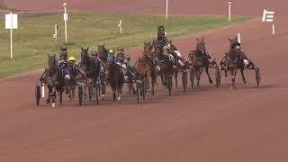 Vidéo de la course PMU PRIX JARDY