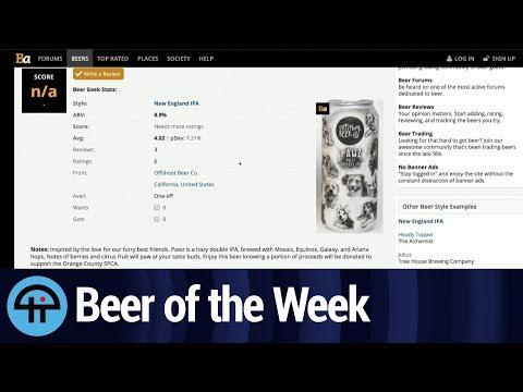 Beer of the Week: Offshoot Beer Co.'s Pawz