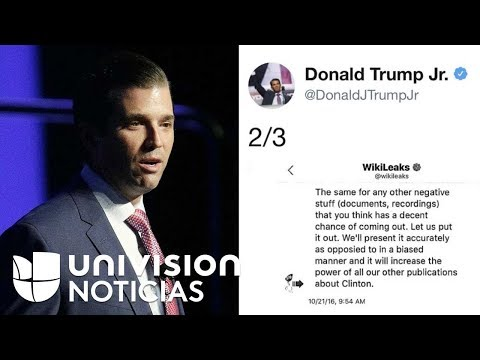 Revelan mensajes entre Donald Trump Jr. y Wikileaks durante campaña presidencial del 2016