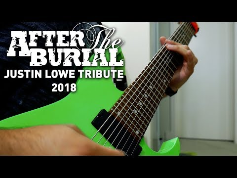 After The Burial - Your Troubles Will Cease... (Justin Lowe Tribute 2018 Guitar Cover)