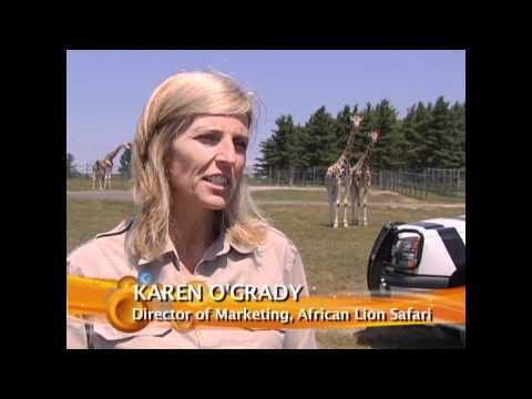 Tourism Hamilton - African Lion Safari in Hamilton, Ontario
