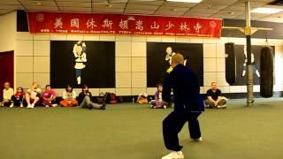 Master Shi De Shan - Taiji (T
