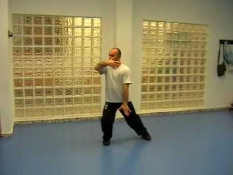 Tai Chi (Taiji) Yang 10 movimientos