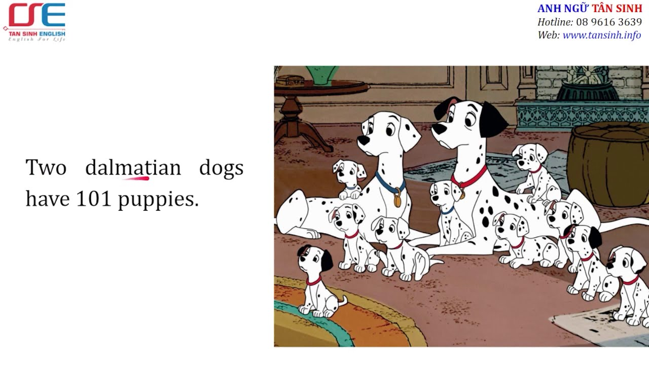 DAILY LESSONS: 101 DALMATIAN DOGS