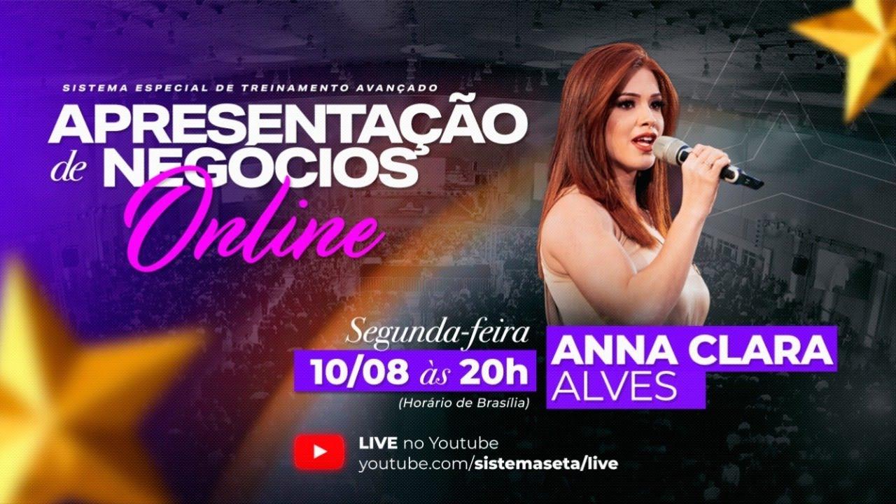 Apresentação de negócios - Anna Clara Alves