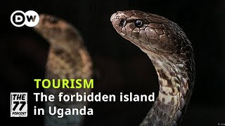 Where is the most dangerous island in Uganda? | The island without women and full of deadly cobras