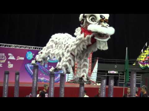 Hong Kong Ha kwok Cheung Lion Dance, China Macau Lion Dance & Indonesia 09-01-2016