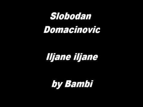 Slobodan Domacinovic - Iljane iljane
