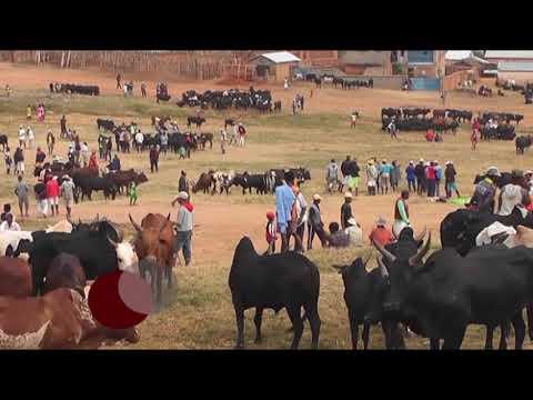 NY ATY AMINAY TSIROANOMANDIDY DU 18 NOVEMBRE 2017 BY TV PLUS MADAGASCAR