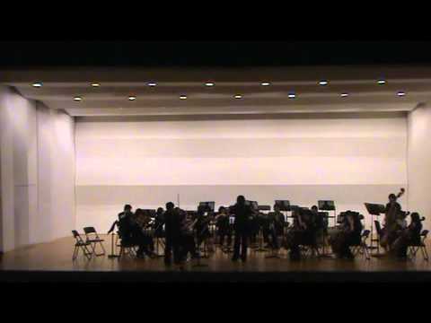 [오케스트라 휴먼] 세번째 연주회 #1 _ Vivaldi, Dvorak, Hummel