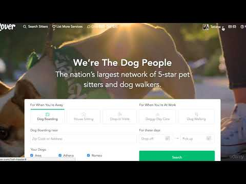How Does Rover Pay It s Dog Walkers, Dog Boarding and Dog Sitters?