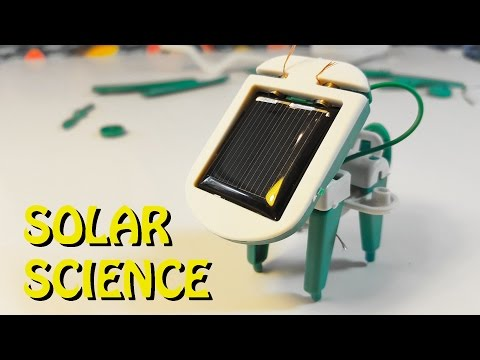 SOLAR PUPPY | Science Experiment Dollar Store Kit
