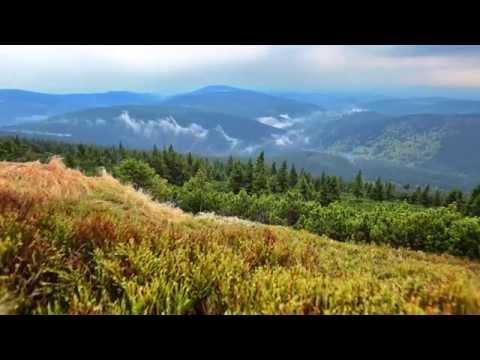 Клип Science - Мелодия вызывающая сон