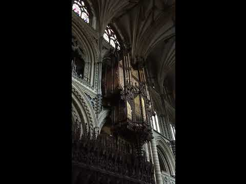 Organ Practice in Ely Cathedral