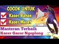 Suara Kacer Di Siang Hari Pancingan Kacer Malas Bunyi Ngeban(.mp3 .mp4) Mp3 - Mp4 Download