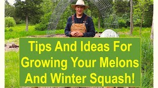 Basic Gardening Tips: Tips and Ideas for Growing Your Melons and Winter Squash
