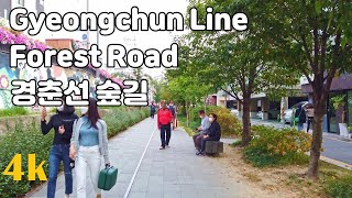 경춘선 숲길 PART1 - 서울, 대한민국 - 걷기 좋…