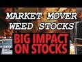 Another HUGE RALLY FOR AURORA CANNABIS! Whats next for APHRIA?