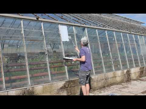 Painting Thorndown Peelable Glass Paint on a greenhouse