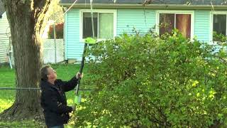 Sun Joe Cordless Trimmer Chainsaw and Leaf Blower