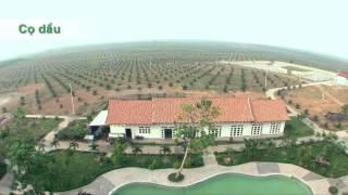Làm nông nghiệp kiểu HOÀNG ANH GIA LAI (HAG)
