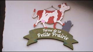 L'Européen d'à côté : Création d'un atelier de transformation laitière en Alsace
