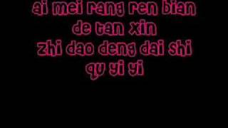 rainie yang - ai mei [pinyin and english lyrics]