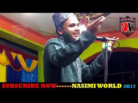 Akhtar Parwaz Naimi || दामाने मुस्तफा मील गया है || SUPERHIT NEW NAAT PAAK - नसीमी वल्र्ड-8339889132