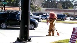 Fidelity Bank Courageous the Lion in Mandarin Florida