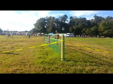 Competitive Wave Start Baddest Mud Run