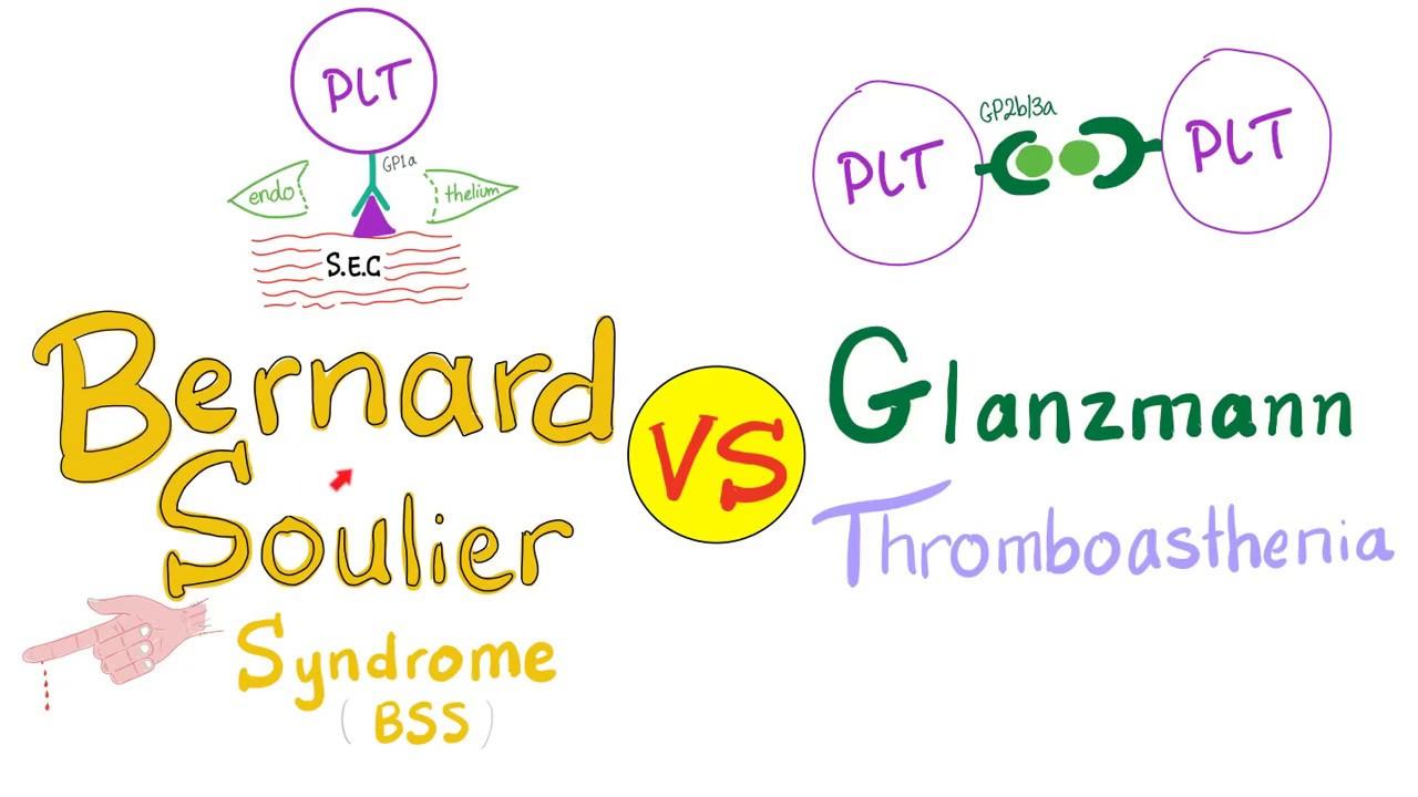 Bernard Soulier Syndrome (BSS) vs Glanzmann Thrombasthenia (GT) - YouTube