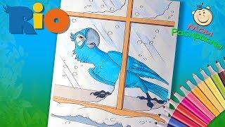 Рио Раскраски из мультфильма для Детей  Раскраска для маленьких Попугай Голубчик