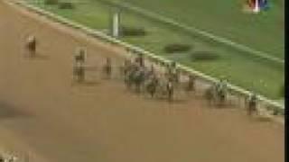 Barbaro - 2006 Kentucky Derby (Dave Johnson