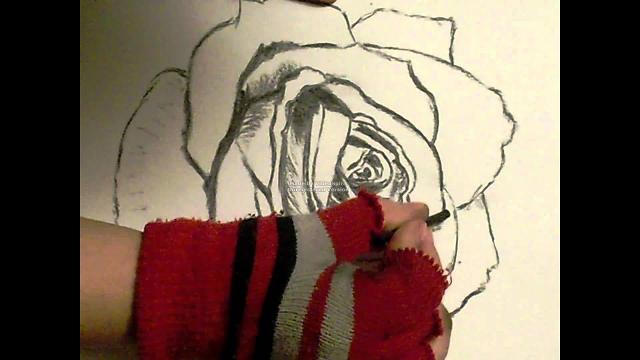 It's just a photo of Vibrant Charcoal Rose Drawing